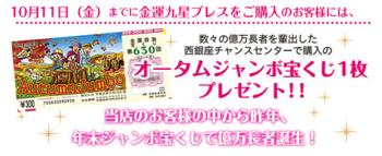金運九星ブレス・宝くじ.png